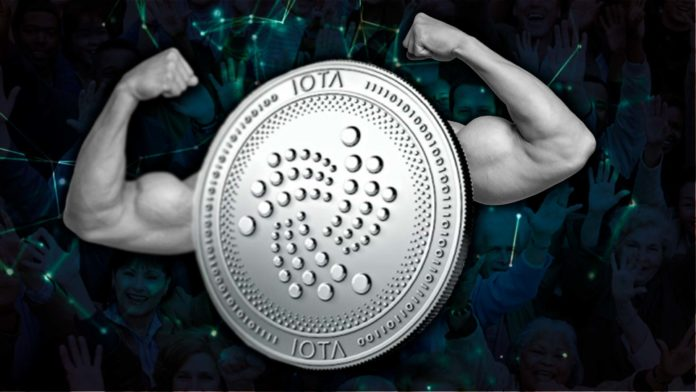 saul ameliach - iota - tangle