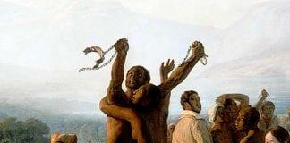 Abolicion