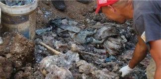 restos humanos