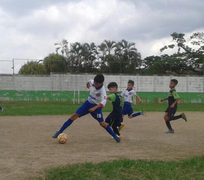Torneo Estadal
