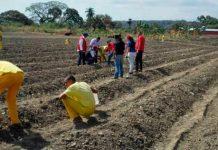 Plan Agroindustrial Penitenciario