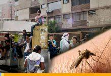 Caracas en alerta- N24C
