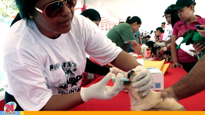 noticias24carabobo-WEB-N24-Misión-Nevado-Carabobo-presta-atención-gratuita-en-diferentes-puntos-del-estado