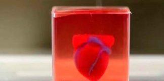Noticias 24 Carabobo - Corazón impreso en 3D