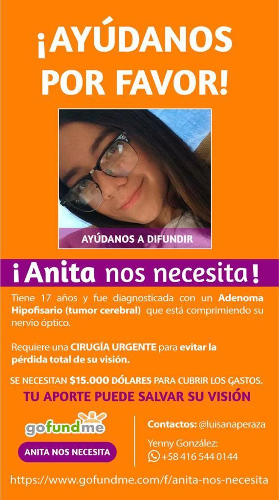 Noticias 24 Carabobo - Anita-nos-necesita-gofundme
