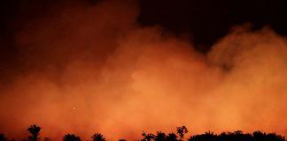 Noticias 24 Carabobo - Amazonas-llamas-peligro-latente