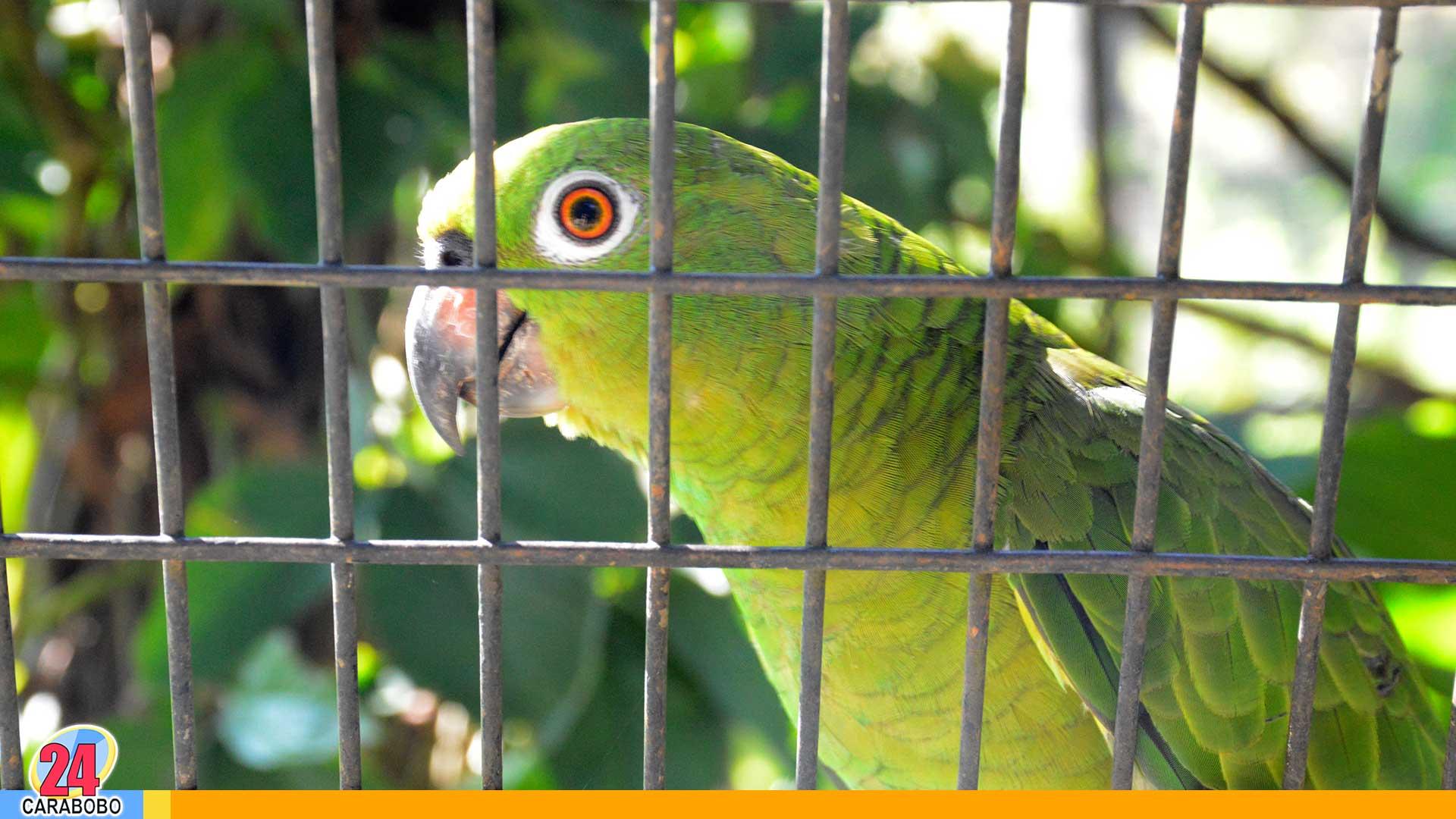 Zoo Acuarium de Valencia