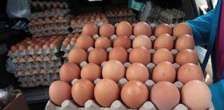 cartón de huevos en los mercados