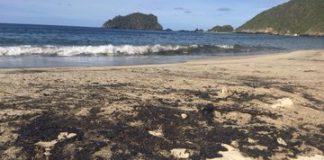 Bahía de Cata se llenó