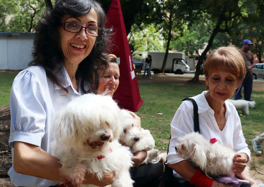 Parque canino - noticias24 Carabobo