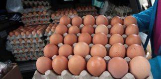 Precio del cartón de huevos en Valencia - Precio del cartón de huevos en Valencia