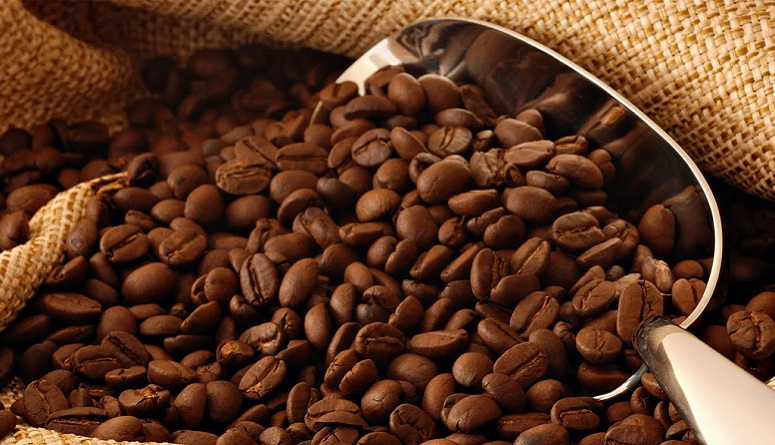 Productores de café de Venezuela - Productores de café de Venezuela