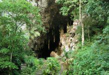 Cueva del Guacharo - Cueva del Guacharo