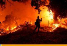 Incendio forestal en California obliga el desalojo de 6.300 residentes