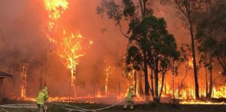 Incendios en Australia