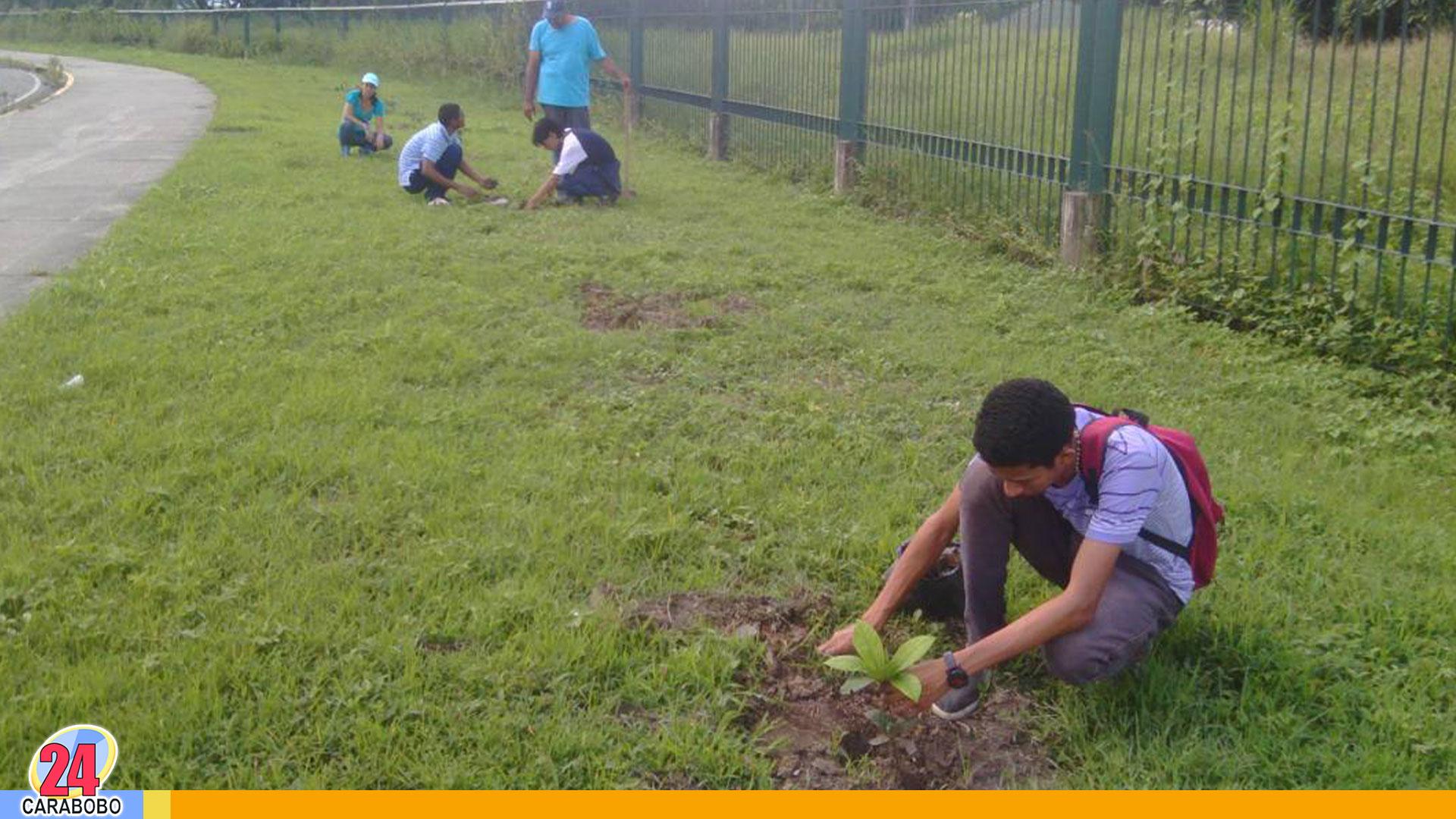 Noticias en Carabobo, Noticias de Carabobo, Noticias24Carabobo, Noticias Hoy, Parque Recreacional Sur, Venezuela, Valencia, 19Nov, 19 de Noviembre