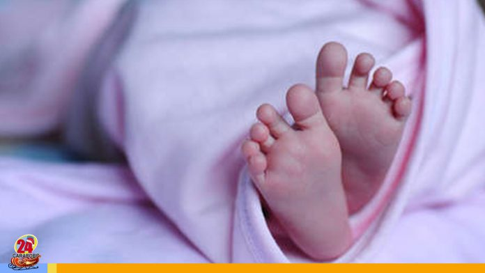 bebé en Quinta crespo - bebé en quinta Crespo
