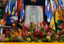 Virgen de Guadalupe - Virgen de Guadalupe
