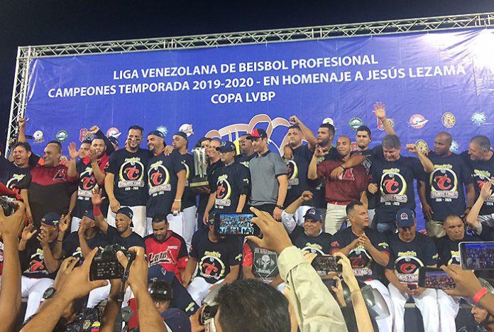 cardenales campeón - cardenales campeón