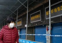 Mercado de Wuhan - Mercado de Wuhan