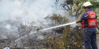 Bomberos de Guacara atendieron más de 100 eventos durante enero