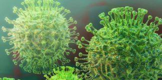 106 casos de coronavirus en el país - 106 casos de coronavirus en el país