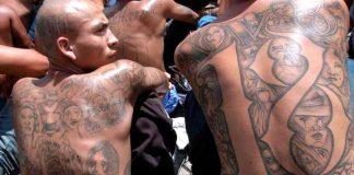 Pandillas de El Salvador - Pandillas de El Salvador