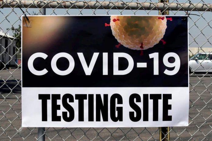 OMS ratificó coronavirus de origen animal - noticias24 Carabobo