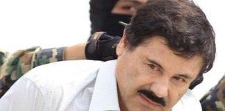Los cuidadores de El Chapo - Los cuidadores de El Chapo