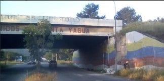 Yagua en cuarentena radical - Yagua en cuarentena radical