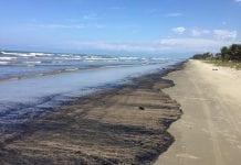 Derrame petrolero en costas de Falcón - Derrame petrolero en costas de Falcón