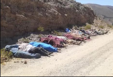 Accidente vial en Bolivia