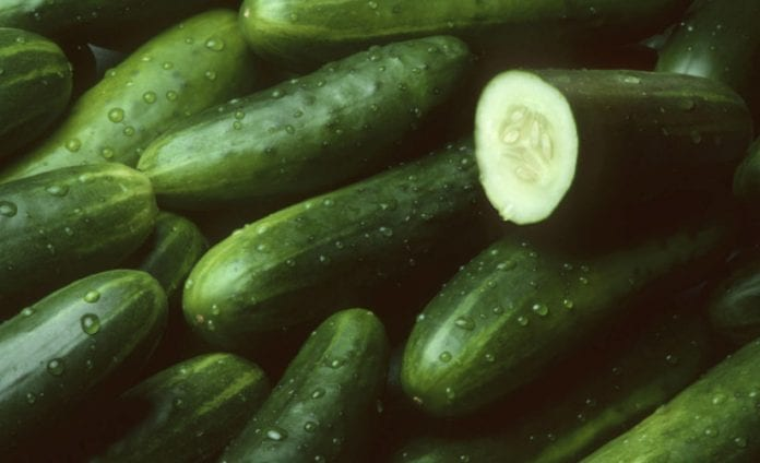 Beneficios del pepino - Beneficios del pepino
