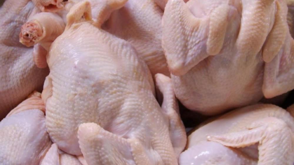 Nuevo precio del pollo – nuevo precio del pollo