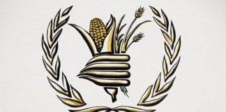 Programa Mundial de Alimentos - noticias24 Carabobo