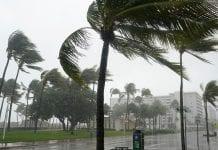 Tormenta tropical Eta - Tormenta tropical Eta