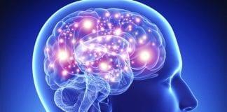Salud cerebral - Salud cerebral