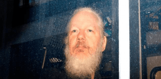 Liberación Julian Assange