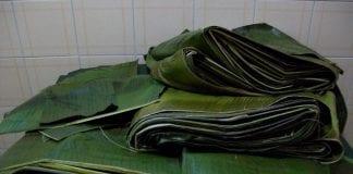 hojas para hallacas - hojas para hallacas
