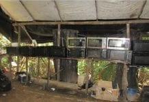 Efectivos desmantelaron dos campamentos