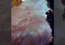 Nuevo derrame de petróleo en Monagas - Nuevo derrame de petróleo en Monagas