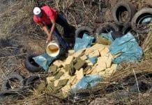 Efectivos incineraron 500 kilos de droga