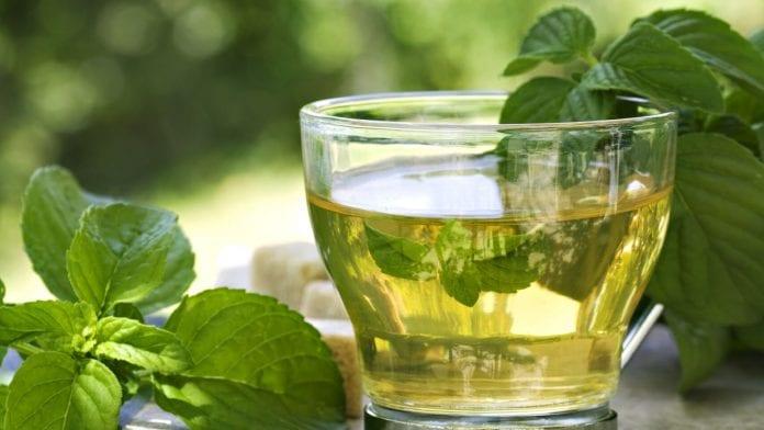 té verde - té verde