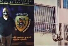 Lanzó a un gato en la urbanización San Martín - Lanzó a un gato en la urbanización San Martín
