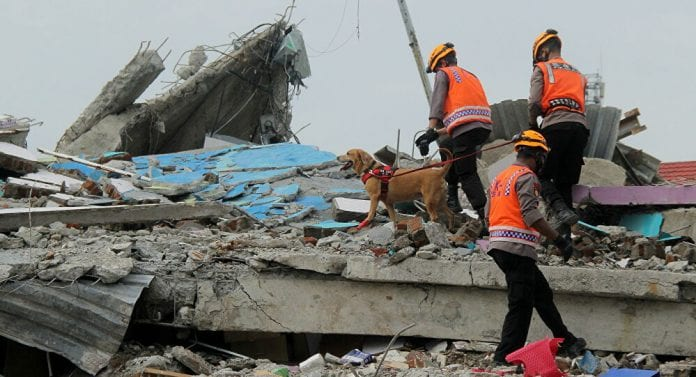 73 muertos y 826 heridos terremoto Indonesia - 73 muertos y 826 heridos terremoto Indonesia