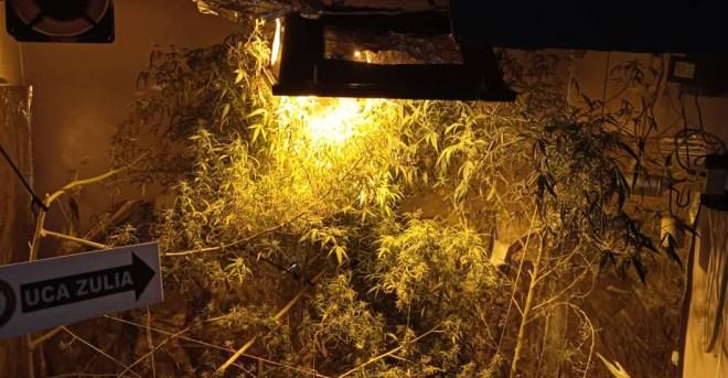 laboratorio clandestino de droga