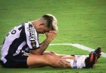 Palmeiras campeón - Palmeiras campeón