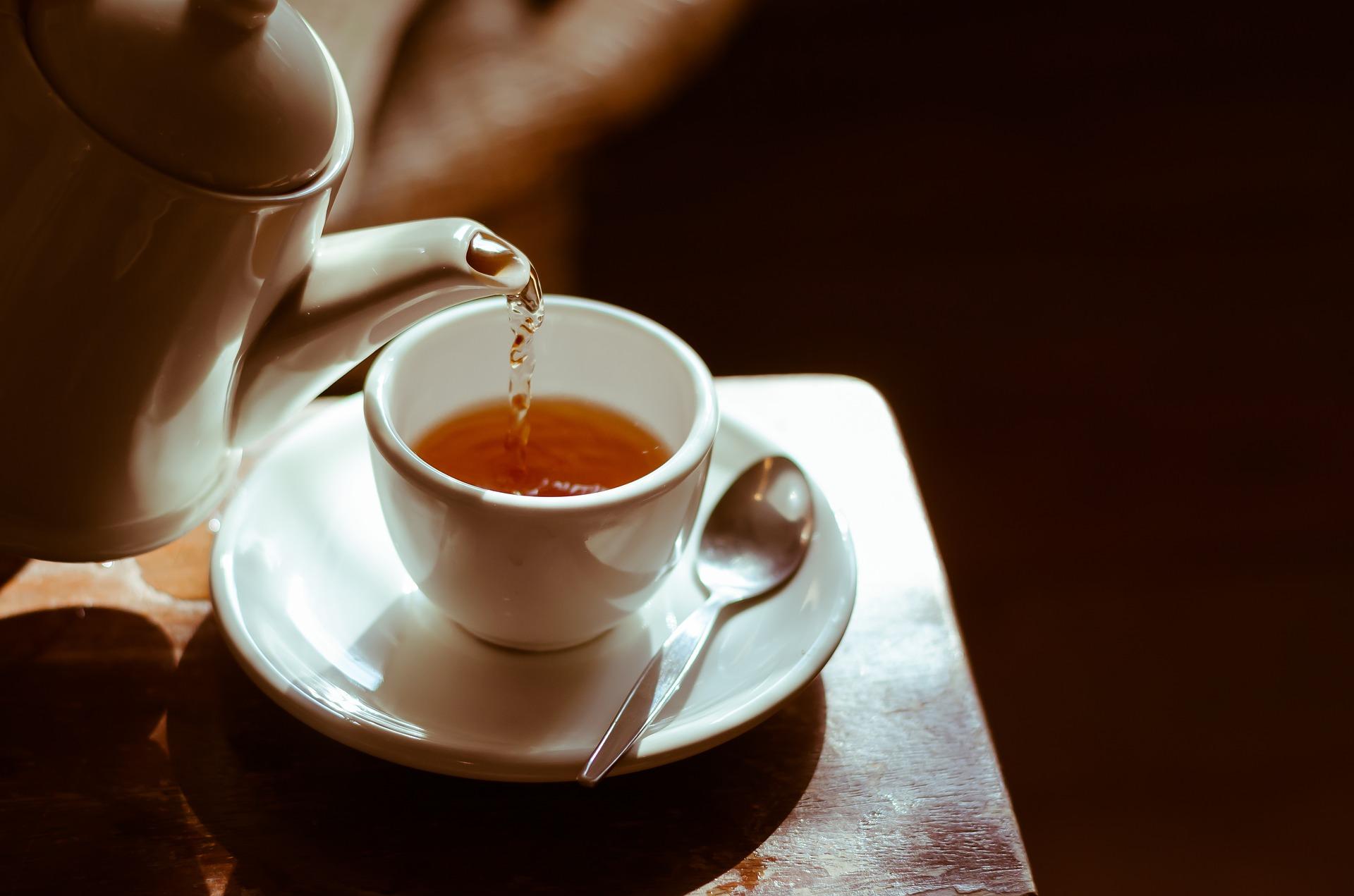 té de malojillo