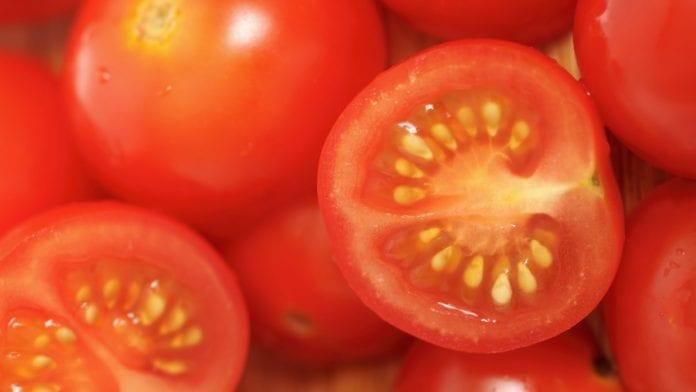 Precio del tomate - Precio del tomate