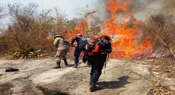 Inparques sin equipos incendios forestales